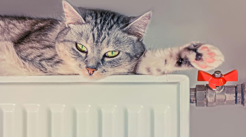 Мажилисмены возмутились ростом цен на отопление