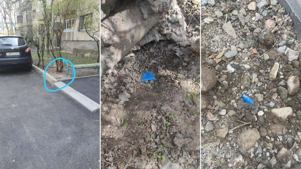 Алматы полициясы тұрақты есірткі желісін жойды (Видео)