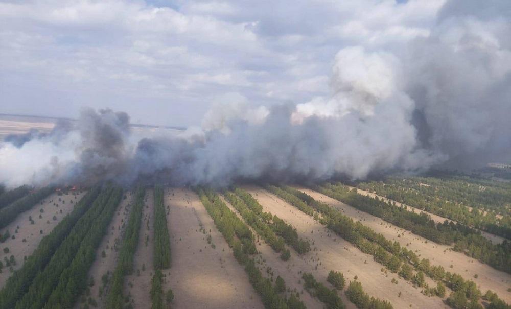 Пожар в Павлодарской области пока не ликвидирован