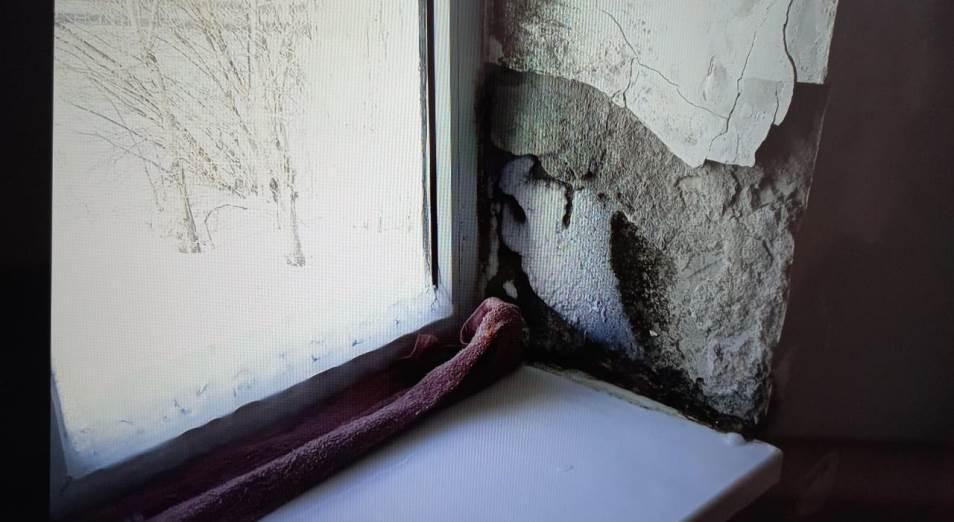 Жилье для сирот: трещины, протекающая крыша, плесень и грибки