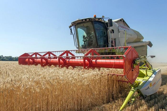Станет ли прозрачным зерновой рынок Казахстана?