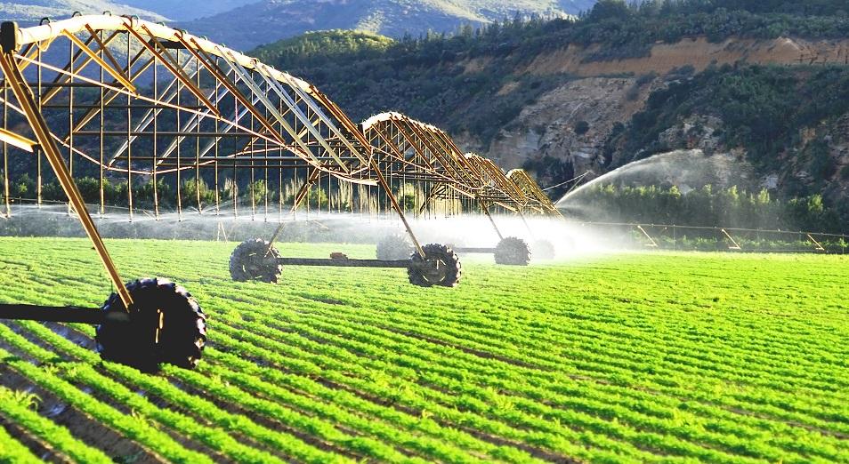 Агроөнеркәсіп саласын инновациялауға басымдық беріледі