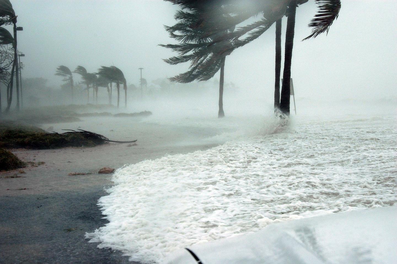 Жертвами цунами на индонезийском острове Сулавеси стали почти 50 человек