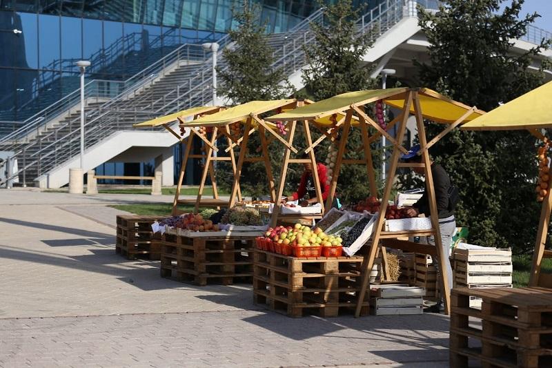 «Яблочные шашки» и «Алмабол»: в Алматы празднуют День города