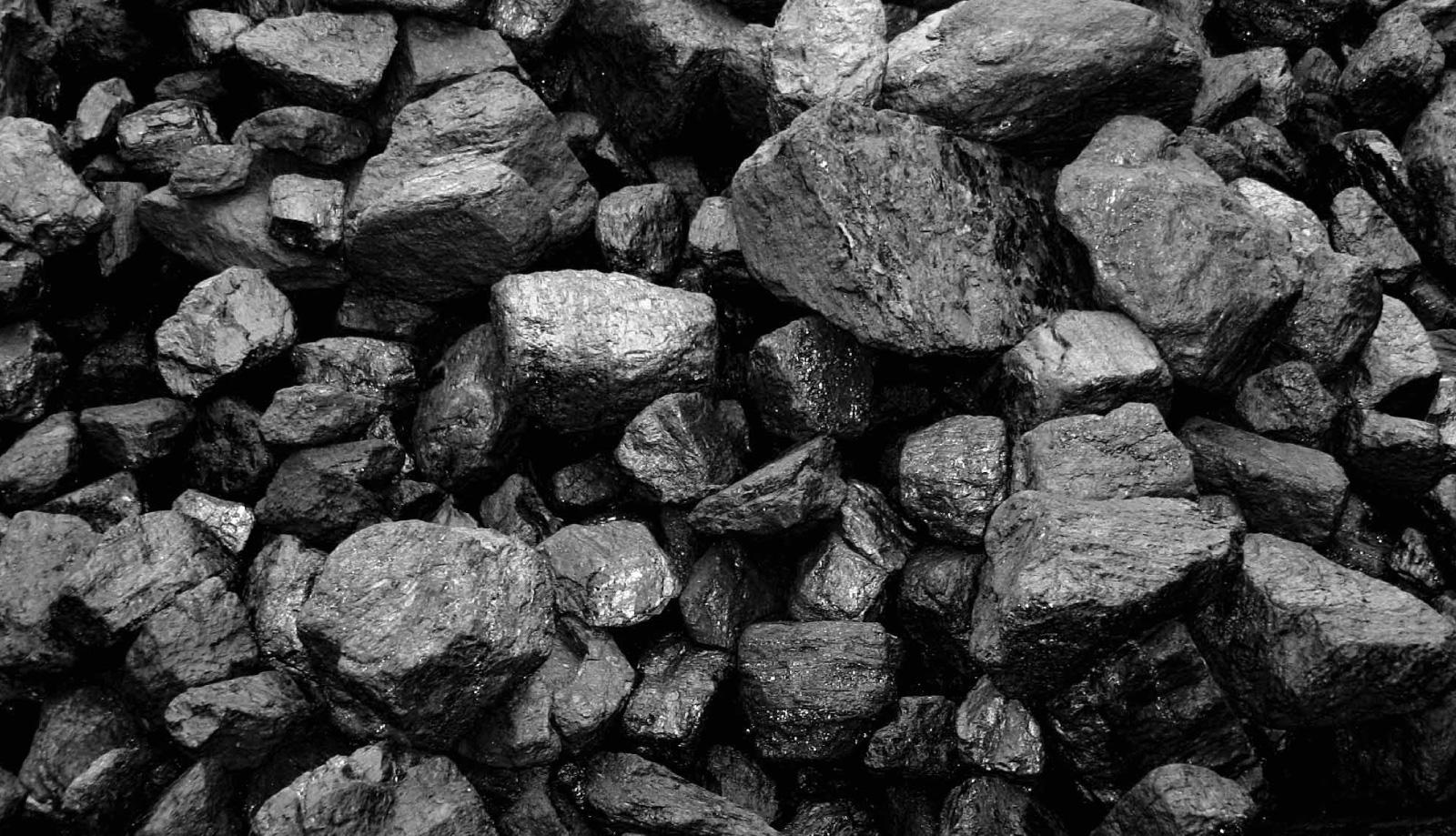 В Астану привезли более 5,5 тонн угля