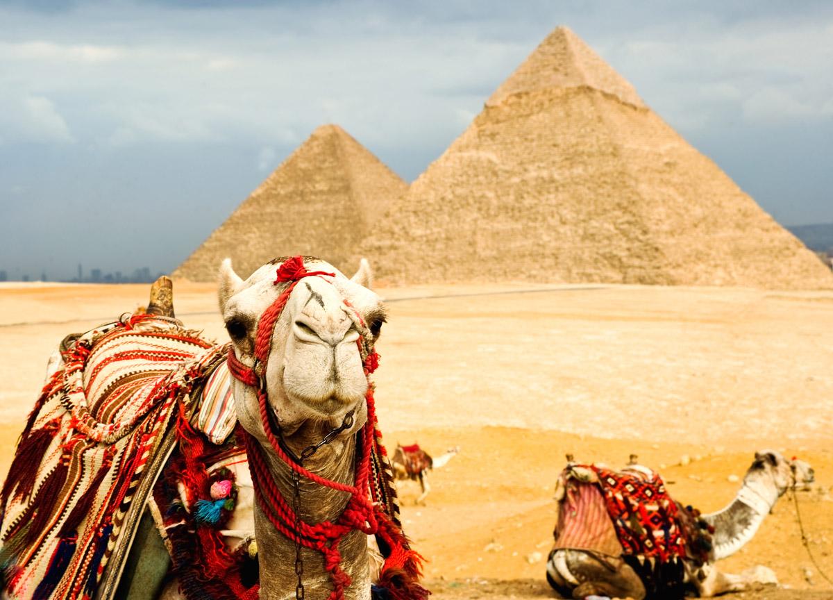 Казахстанцы, попавшие в ДТП в Египте, винят водителя автобуса