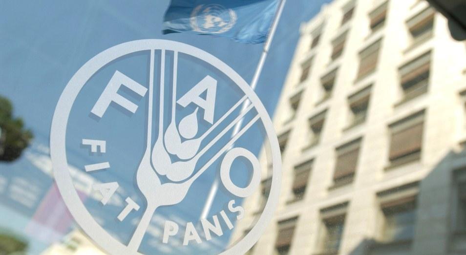 Казахстан станет шестым государством, где откроется бюро FAO