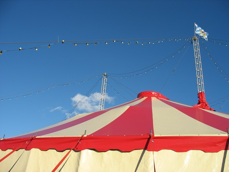 Артистка цирка упала с высоты на выступлении в Талдыкоргане
