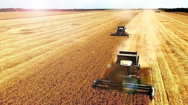 Уборка зерновых культур завершилась в Жамбылской области