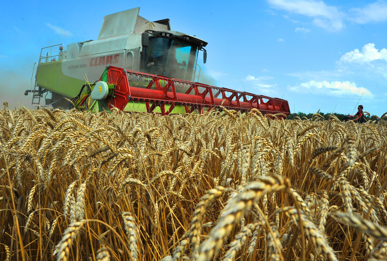 Аграрная кредитная корпорация готова списать штрафы задолжавшим фермерам