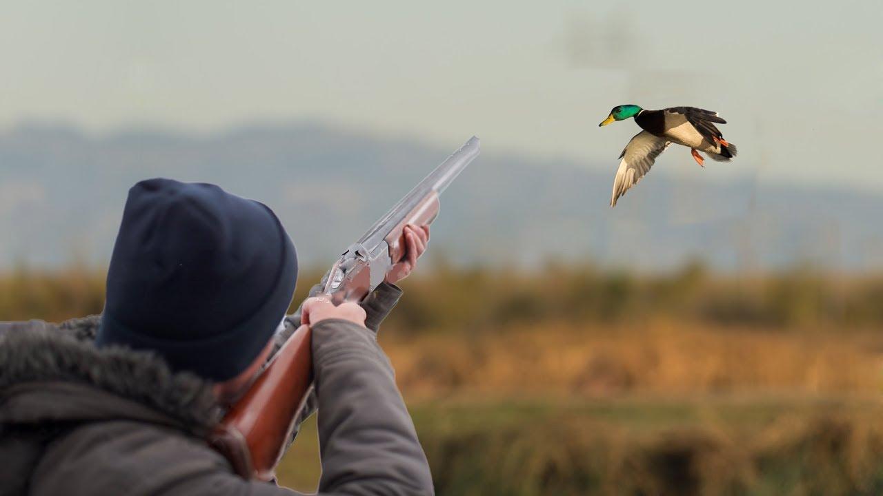Осенне-зимний охотничий сезон открылся в Казахстане