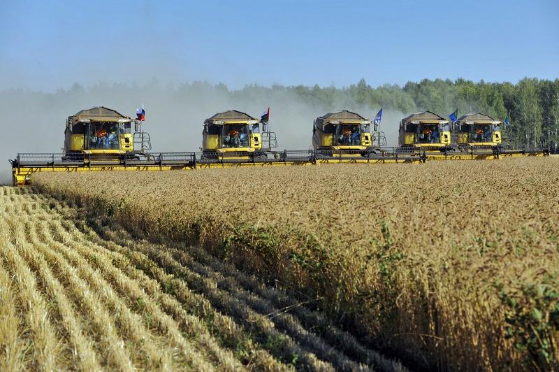В Минсельхозе РФ оценили экспортный потенциал АПК России в $20 млрд
