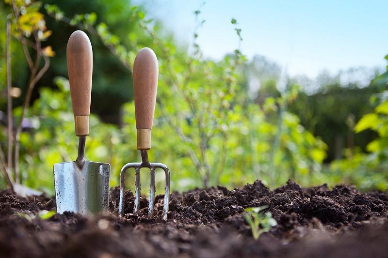 На 100% обеспечивают аграриев фосфорными удобрениями казахстанские производители