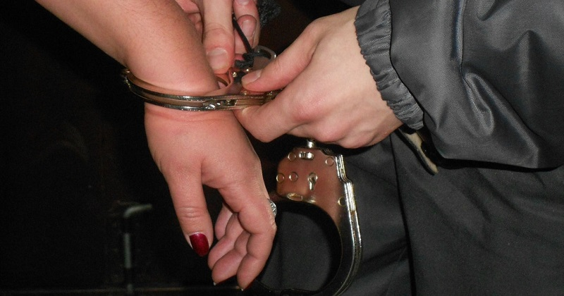 Задержанным в США казахстанкам предъявили обвинения