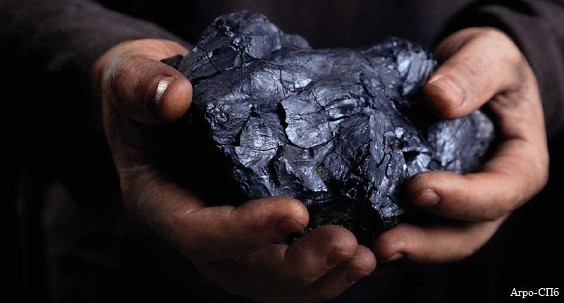 Покупать уголь заранее посоветовал астанчанам Асет Исекешев