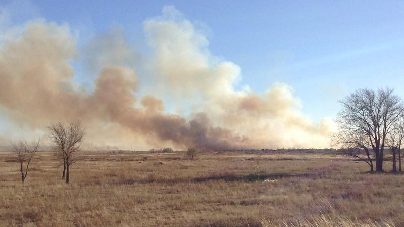 В Восточном Казахстане выгорело 80 га степи