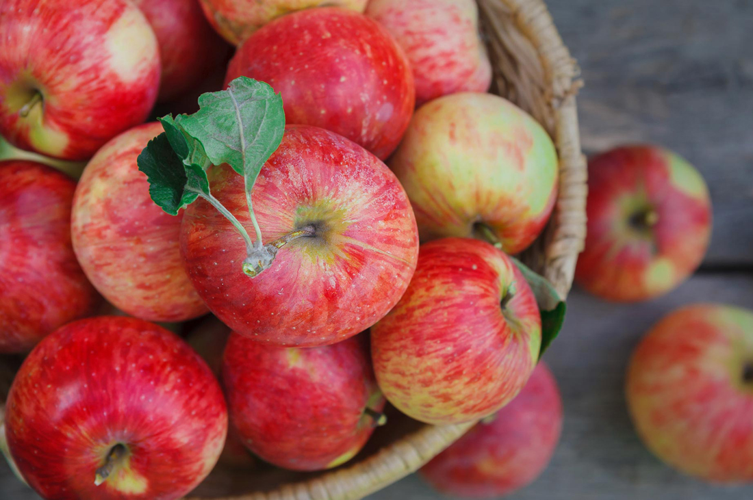 В Алматы подвели итоги конкурса на лучшее яблочное меню