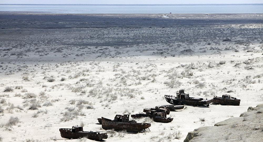 Глава Туркмении призвал к предметному обсуждению проблемы Аральского моря