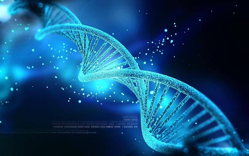Тайная встреча российских ученых по редактированию ДНК