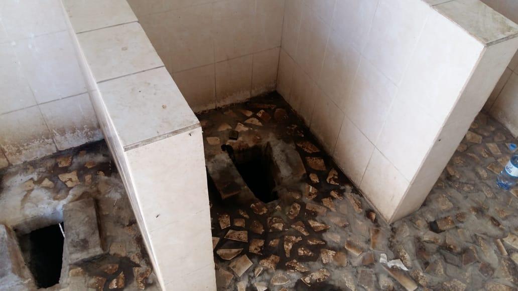 100 тысяч тенге за грязный туалет в зоопарке