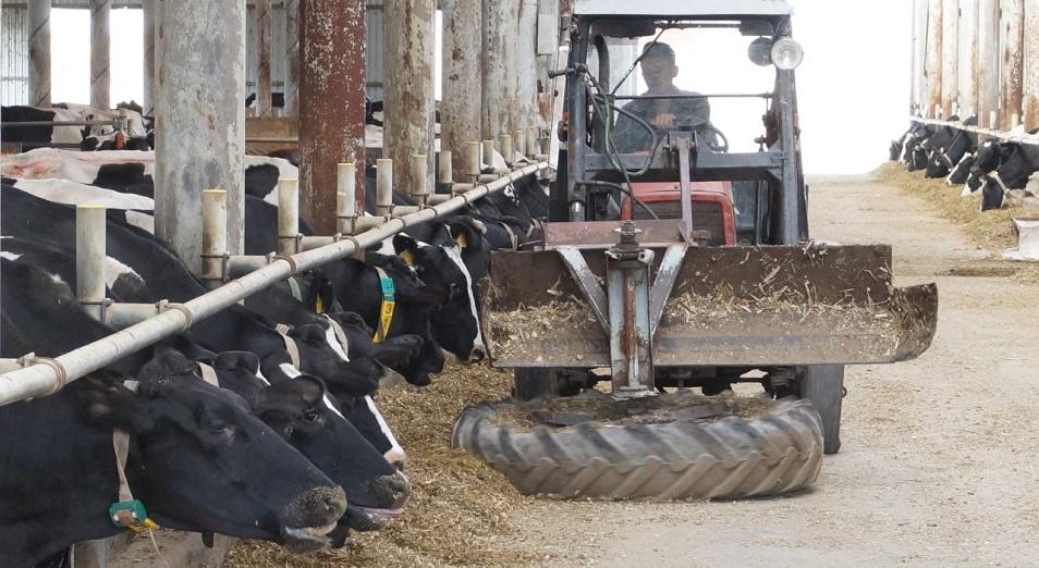 Аграрии на карантине: как сектор живет в условиях ограничений