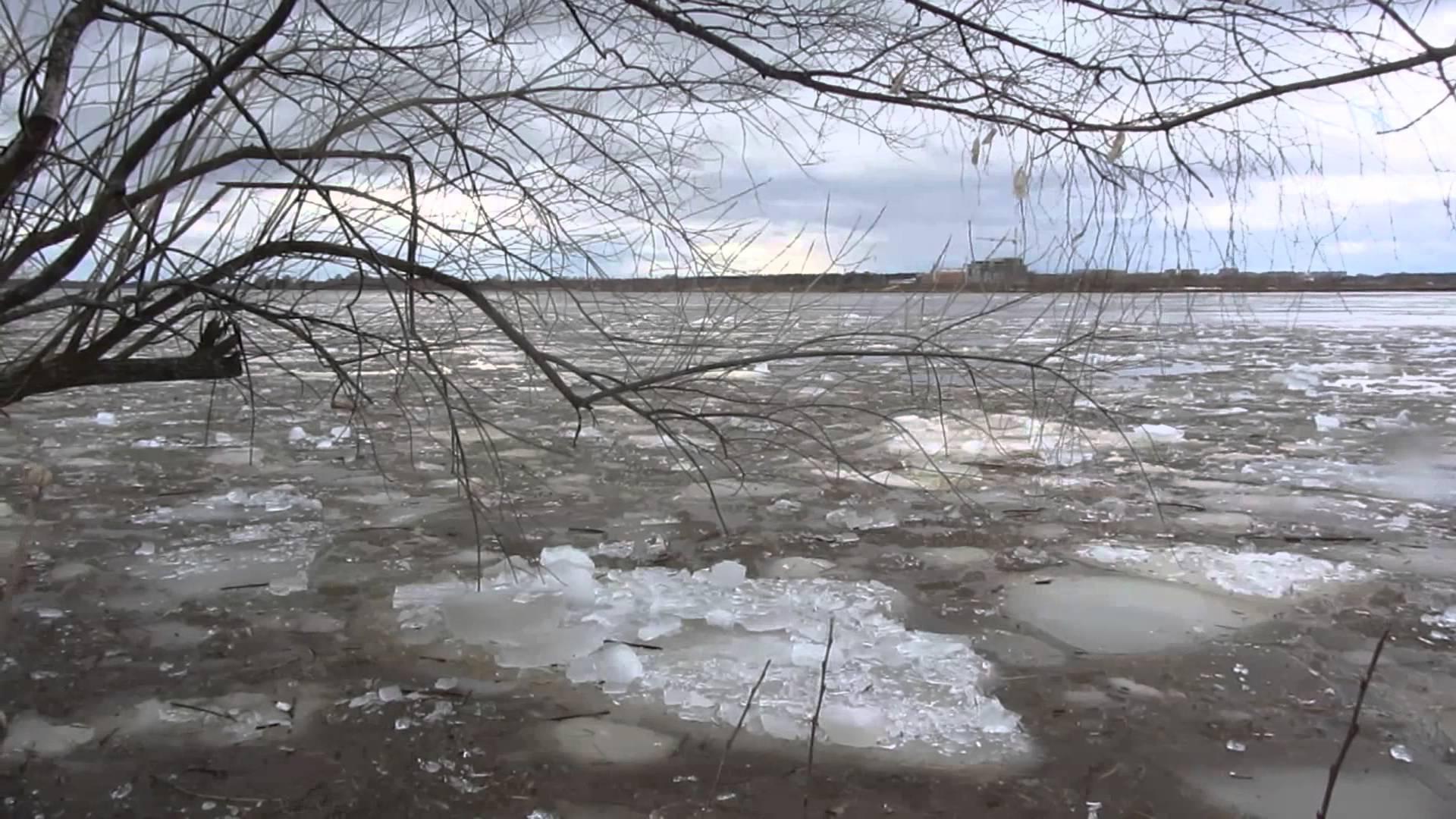 КЧС предупреждает о возможных паводках в Алматы и трех областях Казахстана