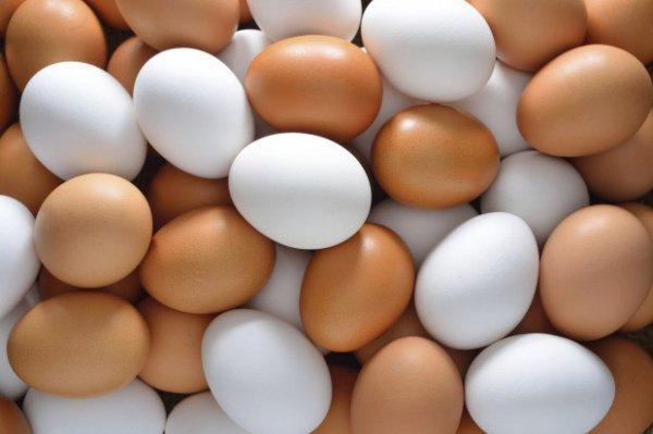 Костанайские яйца могут подорожать