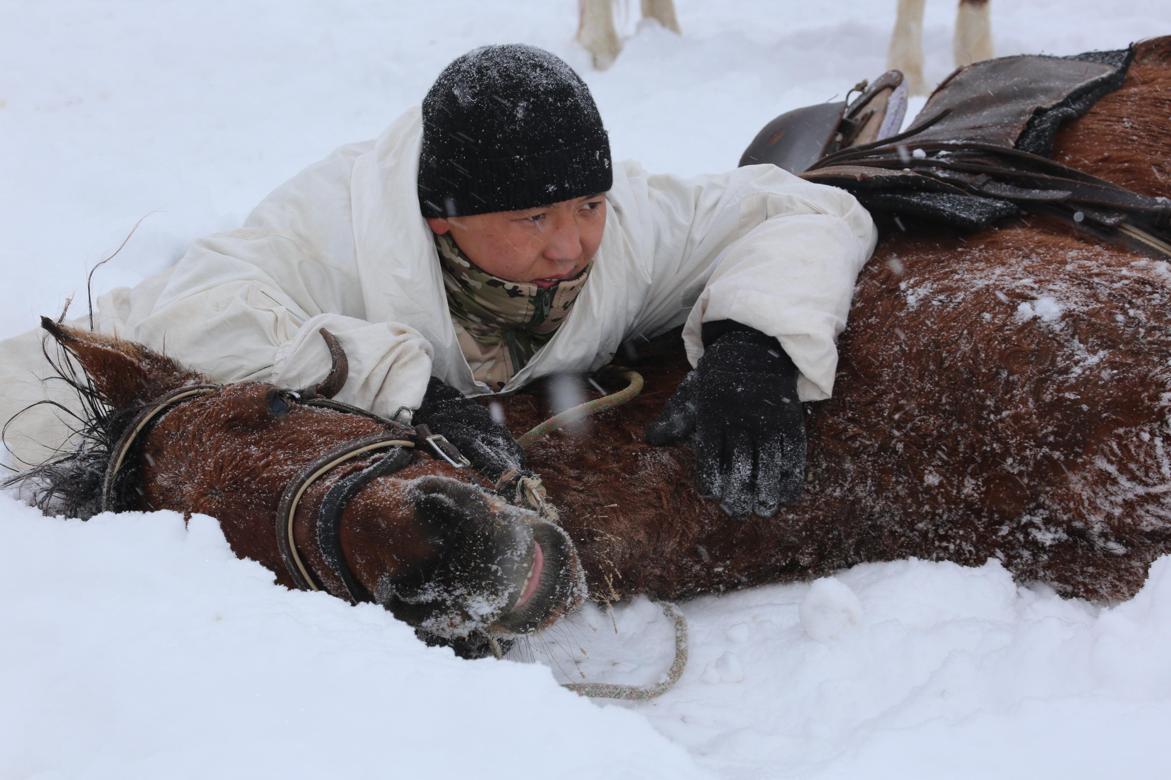 Казахстанские военнослужащие примут участие в Международном конном марафоне в Монголии