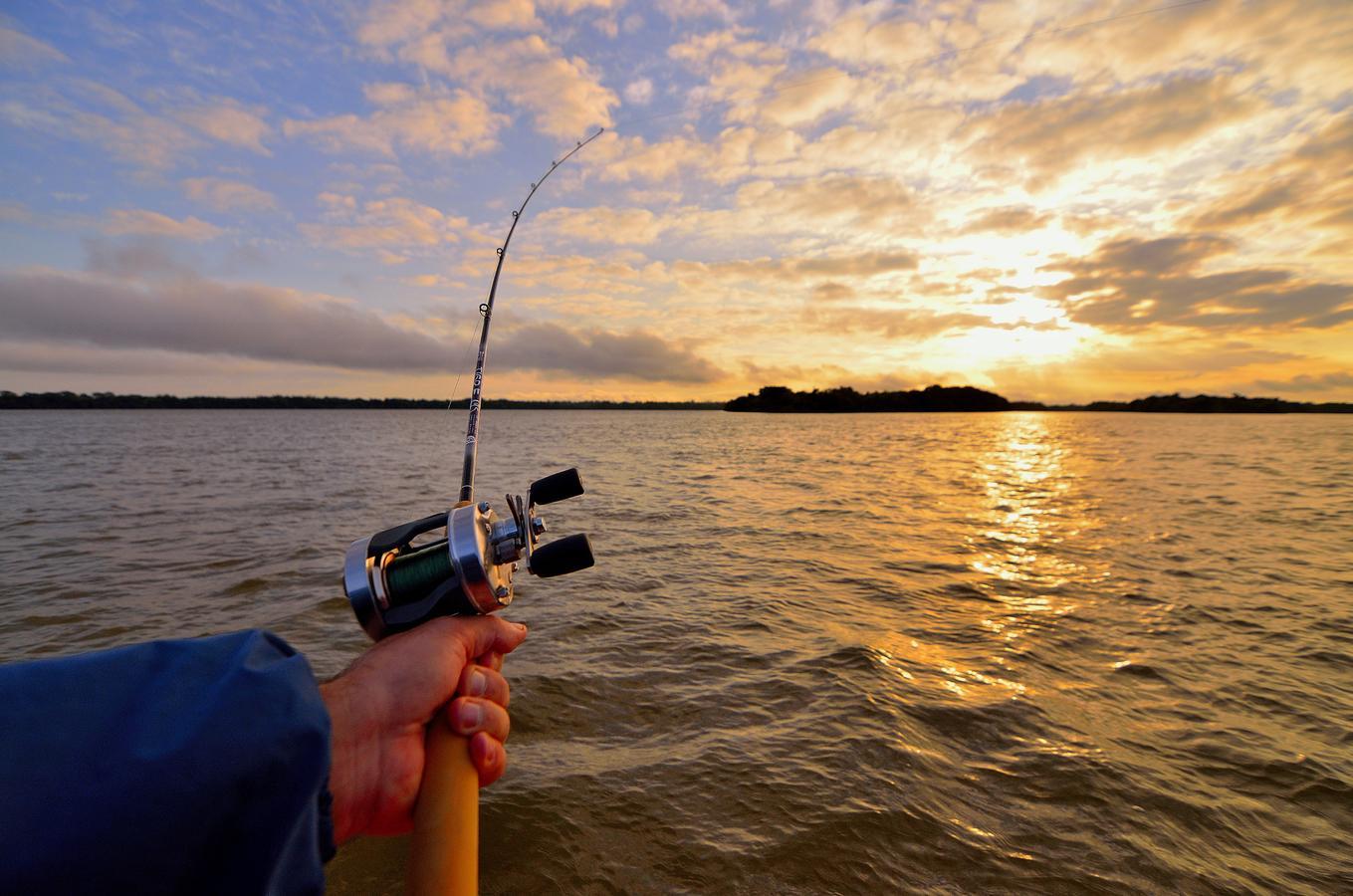 Введен запрет на ловлю рыбы в Коргалжынском заповеднике