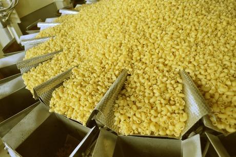 Цех по производству макарон стоимостью 220 млн тенге откроют в Туркестанской области