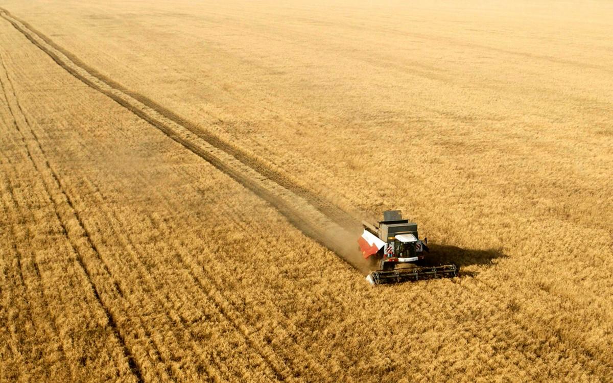 Государство окажет финансовую помощь шымкентским сельхозпроизводителям