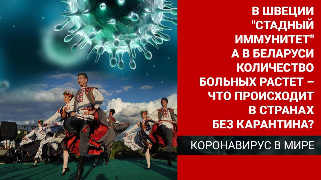 В Швеции  «стадный иммунитет», а в Беларуси  количество больных растет – что происходит в странах без карантина?