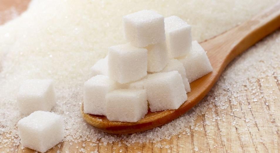 Сахарный завод в Павлодарской области планируют сдать в 2022 году