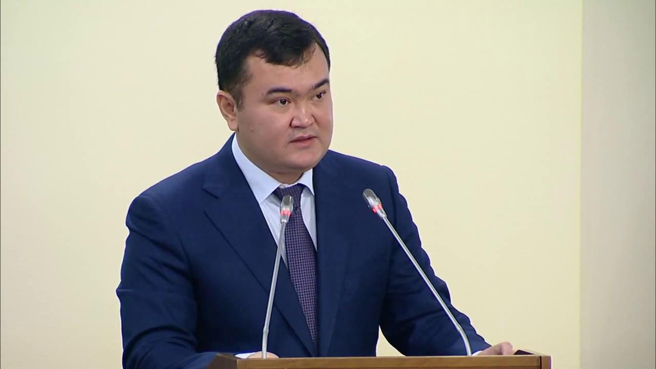 Мажилис РК одобрил в первом чтении законопроект о СЭЗ