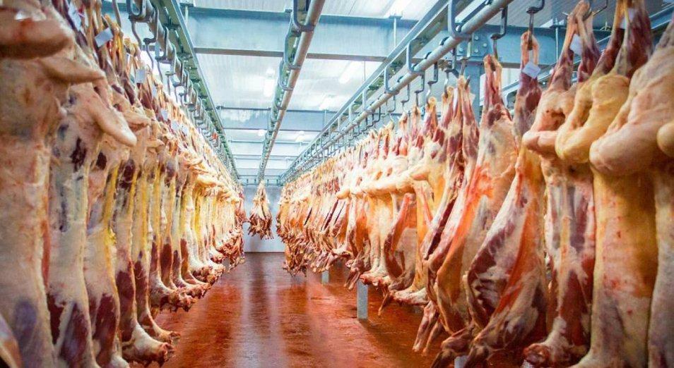 Казахстан наращивает экспорт баранины в Китай