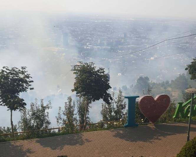 Третье за сутки возгорание сухостоя потушили на склоне горы Кок-тюбе в Алматы