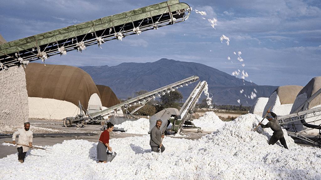 Өзбекстан билігі өңдеу кәсіпорындарын жекешелендіреді