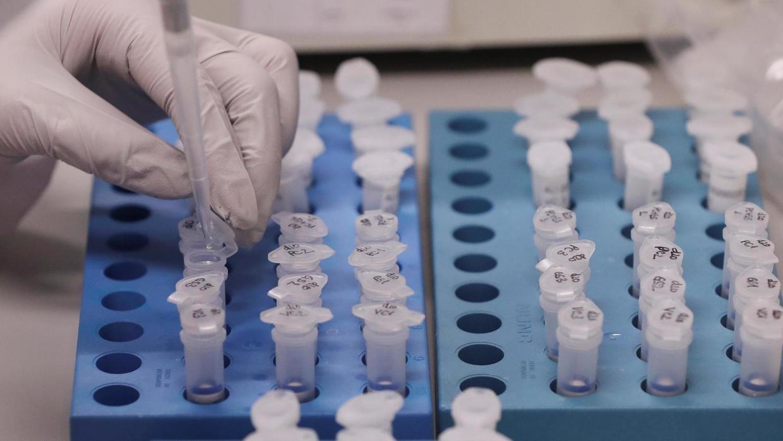 Двое больных коронавирусом в Жамбылской области могли завезти его из Кыргызстана