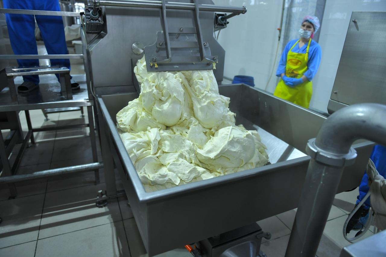 Молочный завод, выпускающий девять видов сыра, открыли в Туркестанской области