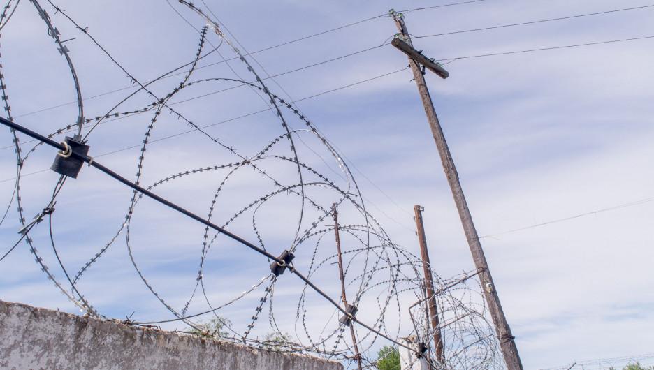 По факту пыток в колонии семерых человек могут привлечь к уголовной ответственности