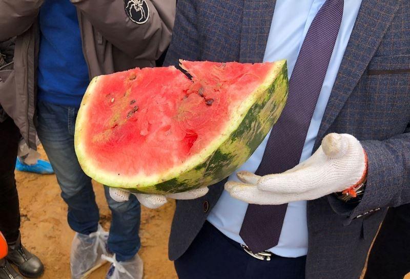 В Астане выявили 10 тонн заражённых арбузов