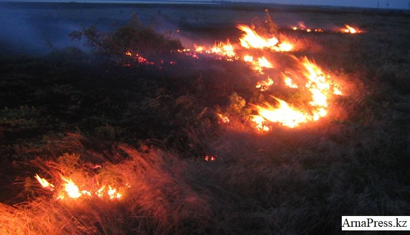 Степной пожар на границе Казахстана с Кыргызстаном удалось остановить