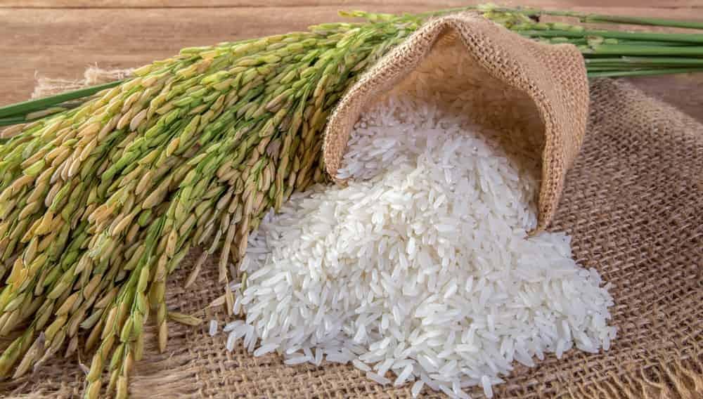 Производство продуктов питания с начала года выросло на 3,5%