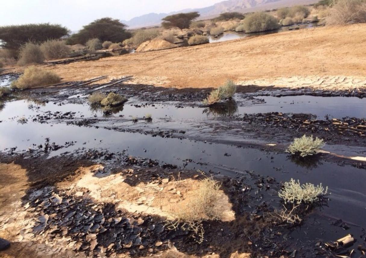Недропользователям предлагают запретить вести работы возле источников пресной воды