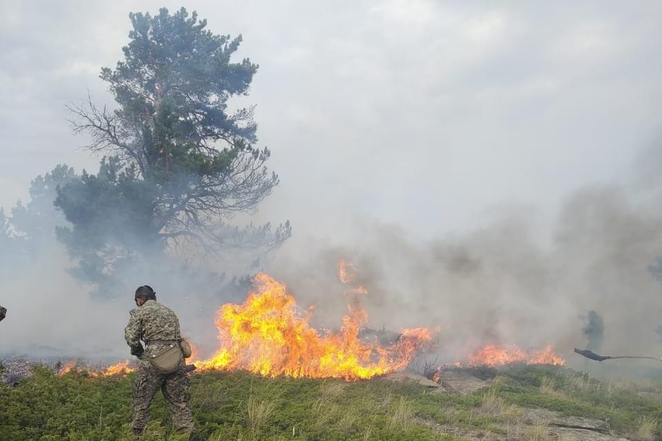 Пожар в Каркаралинском нацпарке локализован