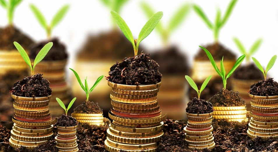 zelenye-dlya-«zelenoj»-ekonomiki