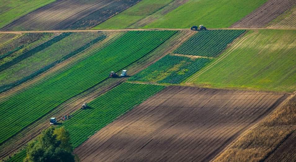 Черный список землевладельцев опубликовал минсельхоз