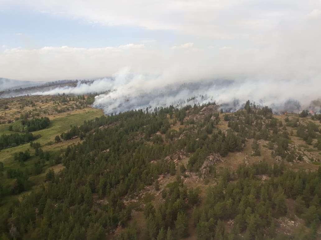 Пожар в Каркаралинском нацпарке: площадь увеличилась до 3,7 тыс. га