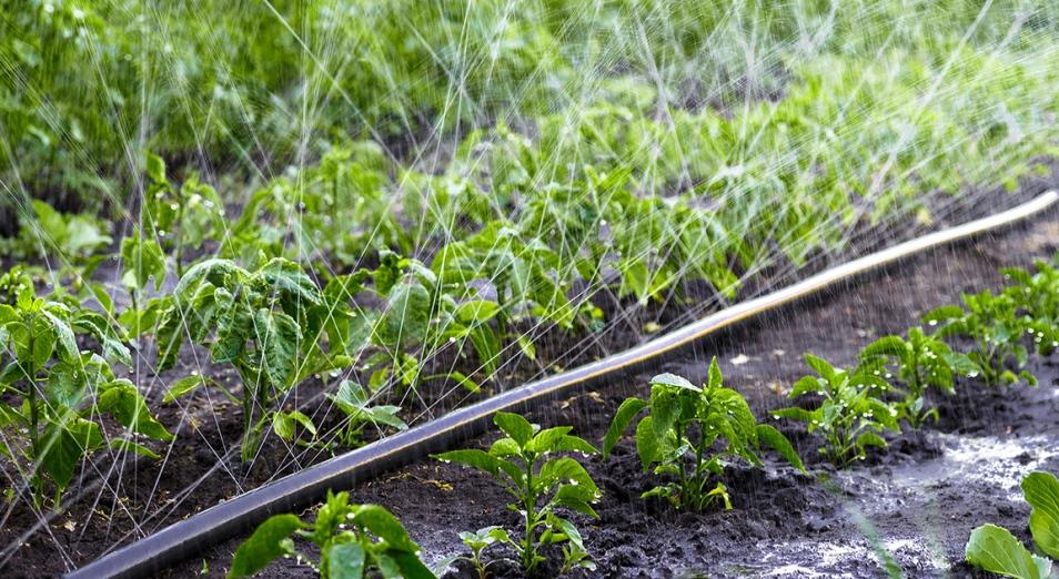 Казахстан 30 лет пугают дефицитом воды: насколько вероятен плохой исход и что здесь не так
