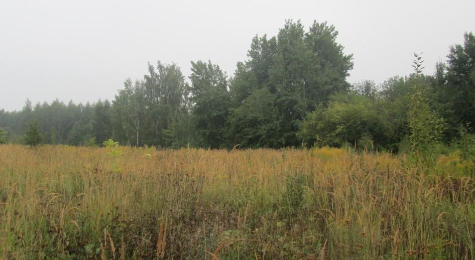 55 млн тенге штрафов за неиспользование земель собрали в Павлодарской области с начала года